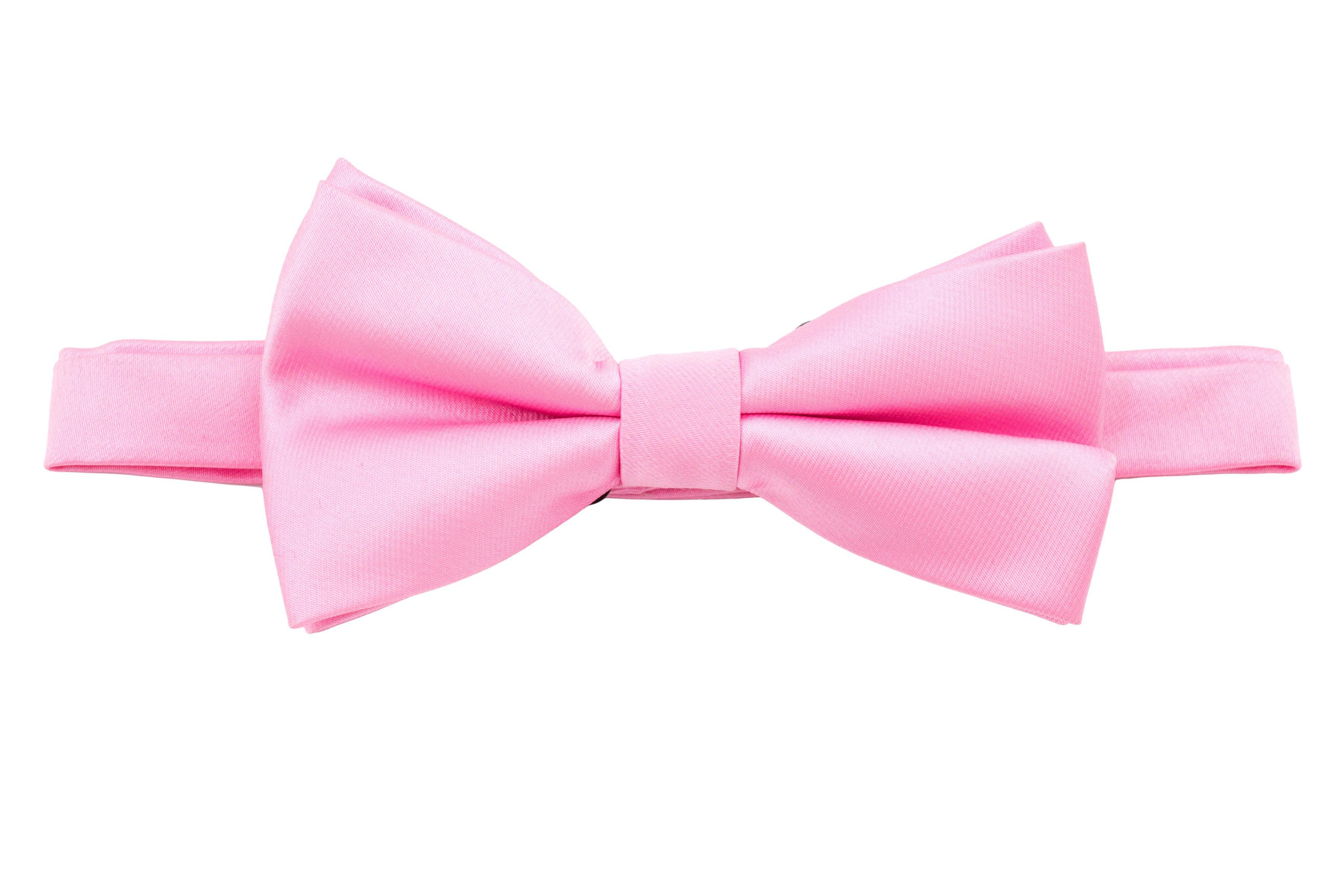 Papion roz uni Grazie Filipeti