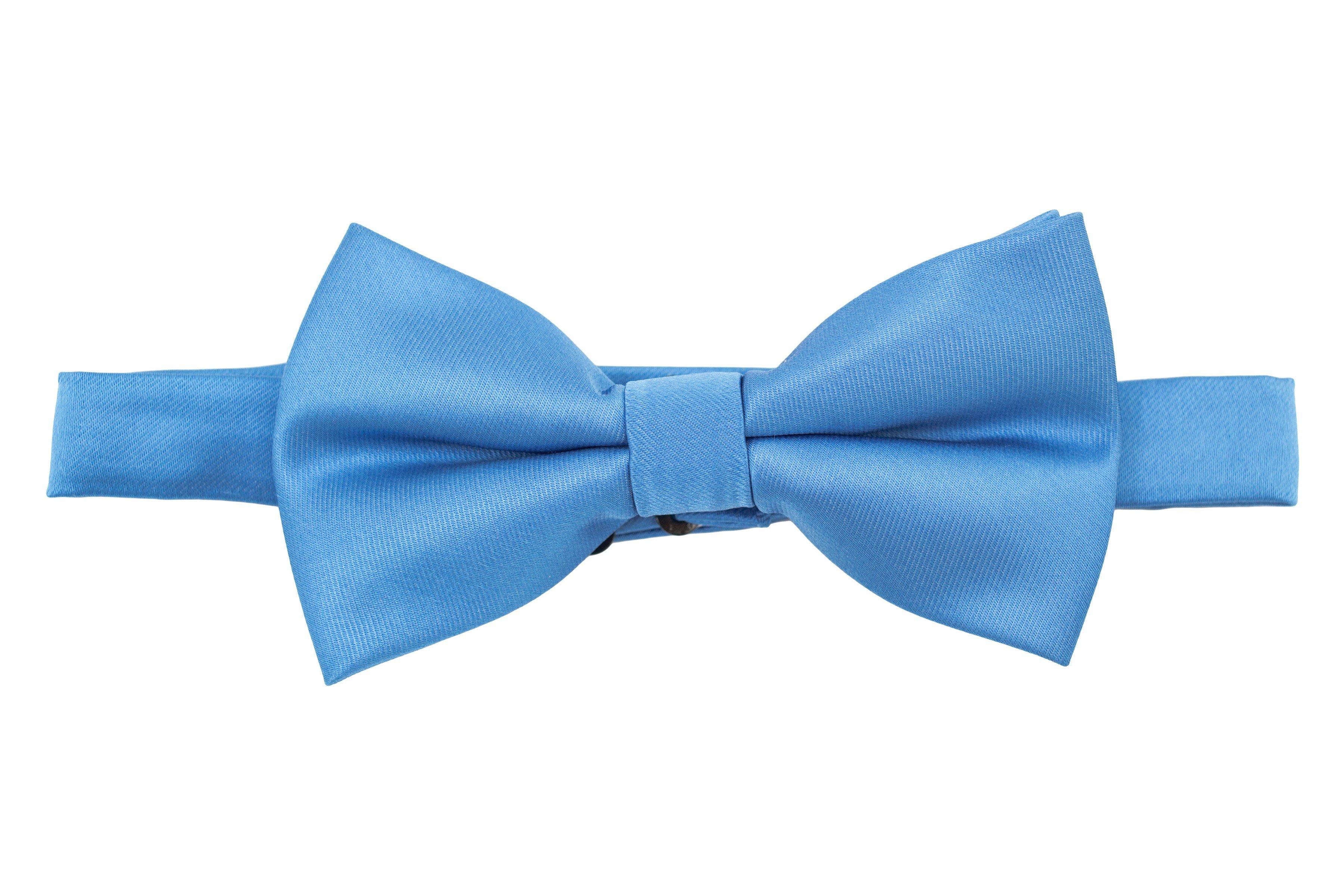 Papion albastru electric Grazie Filipeti